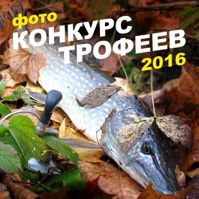 Конкурс трофеев 2016 октябрь АТ.jpg